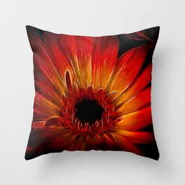Starfire Gerbera Throw Pillow