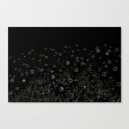 Flower | Flowers | Flowers at Midnight | Black Canvas Print