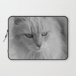 Whiskers 2 Laptop Sleeve