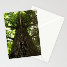 Creekside Reflection Stationery Cards