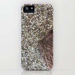 Texturas Hojas secas | CleMpasS.cOm  | Wayoyo.Org | iPhone Case