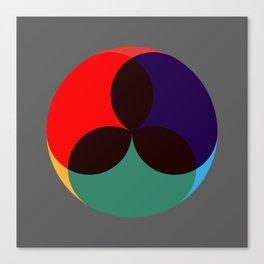 Tricolore 1 Canvas Print