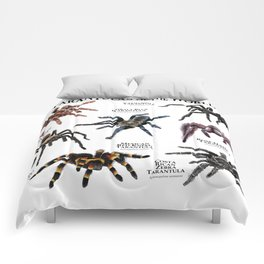 Tarantulas of the World Comforters