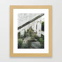 Pillars Path Framed Art Print