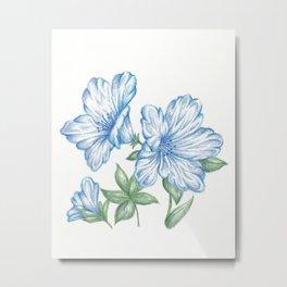 Flower Drawing Print Blue, Azalea Botanical Art  Metal Print