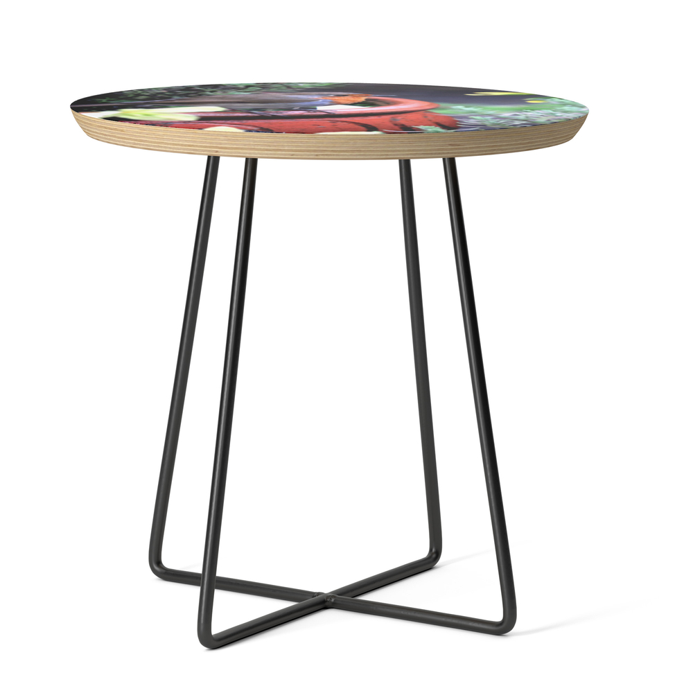 Robin Redbreast Side Table by bryanwb (STD10633414) photo