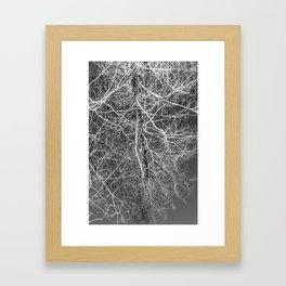 CONNECT Framed Art Print