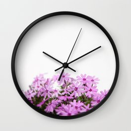 phlox {pink} Wall Clock