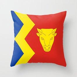 flag of Birmingham Throw Pillow