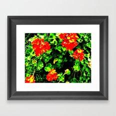 Red Flowers (Edited)  Framed Art Print