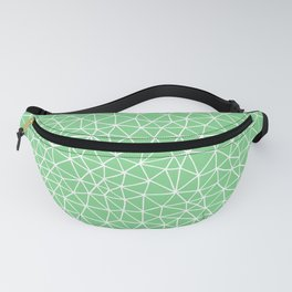 Connectivity - White on Mint Green Fanny Pack