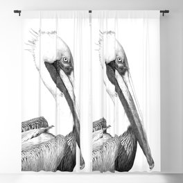 Black and White Pelican Blackout Curtain