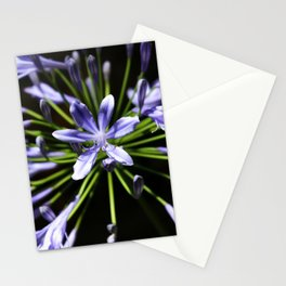 Purple Perennials Stationery Cards