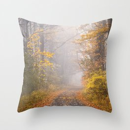 Road in Autumn Mist Throw Pillow