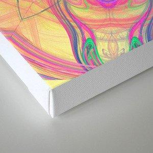 Psychedelic Kaleidoscope Canvas Print