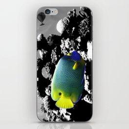 Tropical Fish iPhone Skin