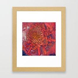 Chrysanthemum (Silk screen & fine liner) Framed Art Print