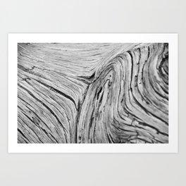 Wood at Arches Art Print