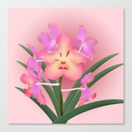 Peach Vanda Canvas Print