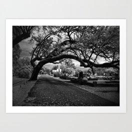 Treeful Cementery Art Print