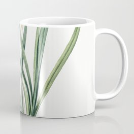 Veltheimia capensis  from Les liliacees (1805) by Pierre-Joseph Redoute Coffee Mug
