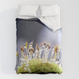 Maco photography Moss Water Drop Rain drops dew Green nature photography Comforters