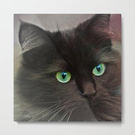 Cat Green Eyes Metal Print