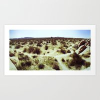 Joshua Tree Panorama I Art Print