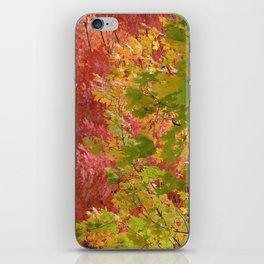 Fall stroll  iPhone Skin