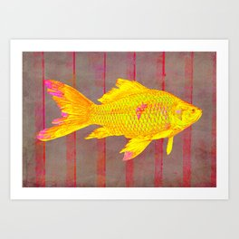 Gold Fish on a Striped Background Art Print