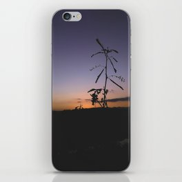 Sunset[ The forest ], Africa iPhone Skin
