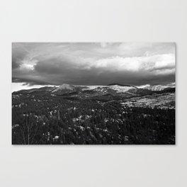 # 320 Canvas Print