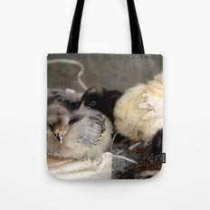 Five Young Chicks Tote Bag