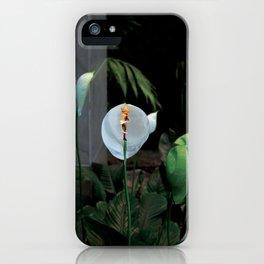 An rioct elves 2 (le royaume des elfes 2) iPhone Case