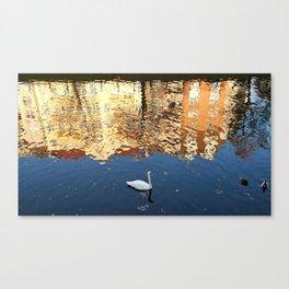Reflector Swan III Canvas Print