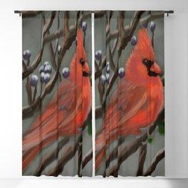 Male Cardinal DP151210a-14 Blackout Curtain