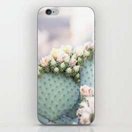 Spring Cactus Blossoms iPhone Skin