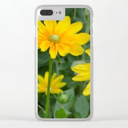 Beautiful rudbeckia garden Clear iPhone Case