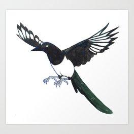Cute Magpie Art Print