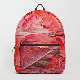 The red carpet Backpack