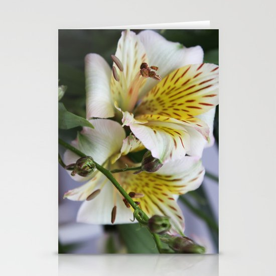 Freesia Stationery Cards