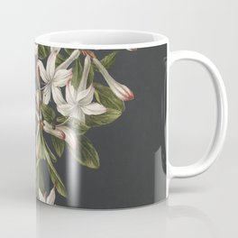 M. de Gijselaar - Branch of blooming azalea (1831) Coffee Mug