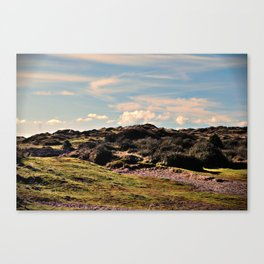 Down in the burrows Canvas Print