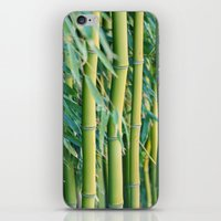 bamboo iPhone & iPod Skins featuring Bamboo by Laura Ruth