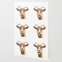 Goat Portrait Wallpaper