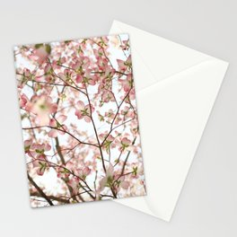 Floral Canopy Stationery Cards