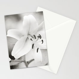 Black and White Lily Flower Photography, Neutral Grey Lilies, Gray Nature Spring Photo Stationery Cards