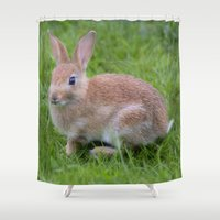 bunny Shower Curtains featuring Bunny by davehare