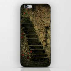 Treppe iPhone & iPod Skin