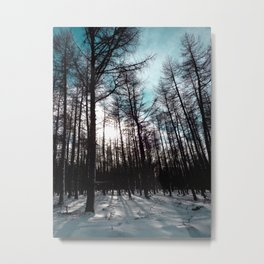 Forest #1 Metal Print